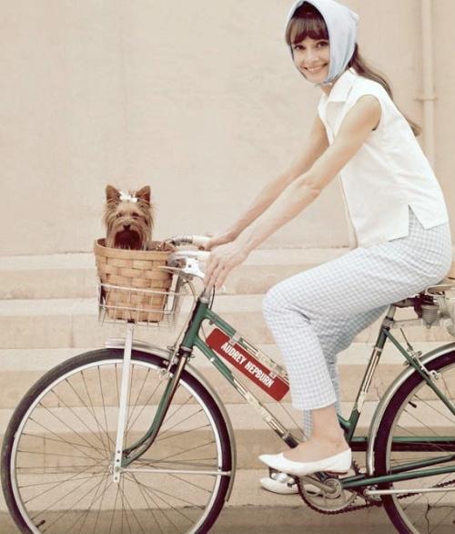 annex-hepburn-biking